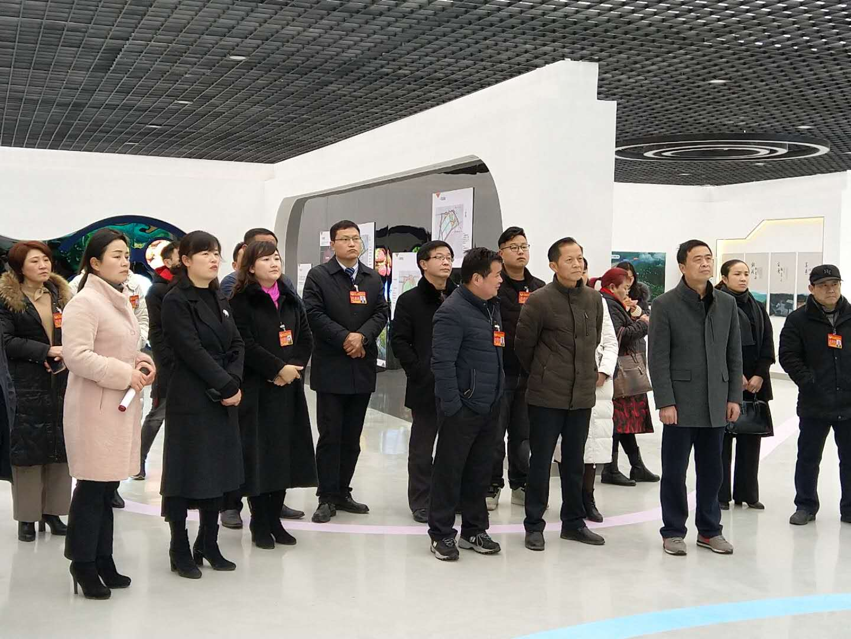 區政協委員視察洪口村鄉村振興項目